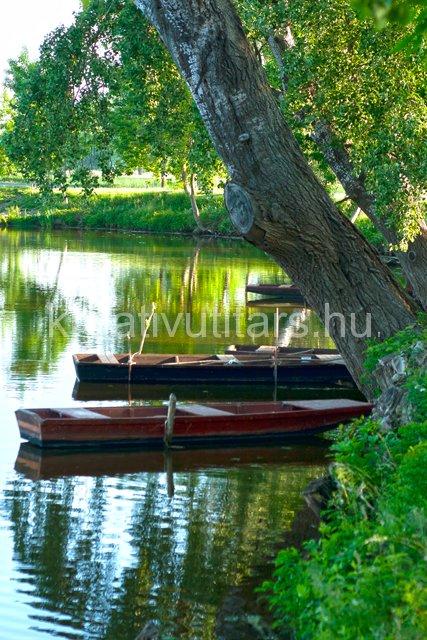 fish-boats